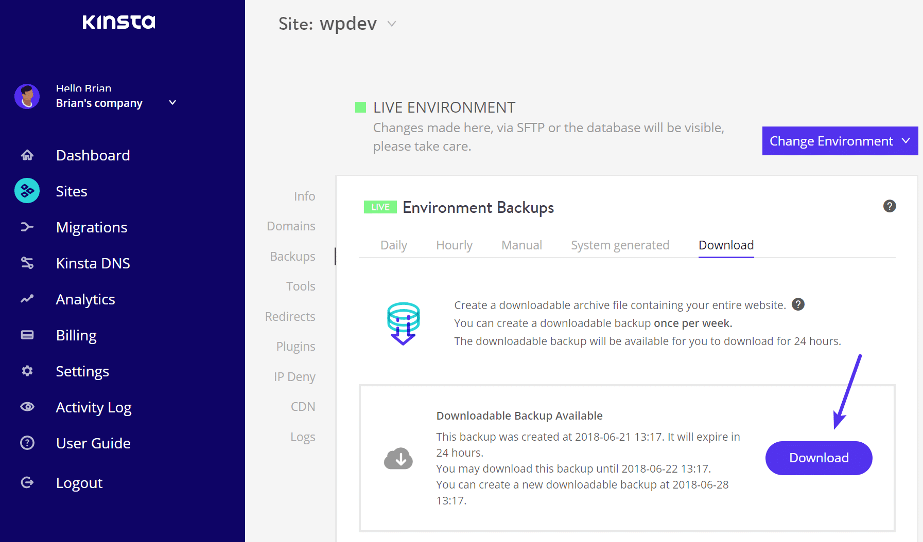 Backup Download bei Kinsta - Schritt 2