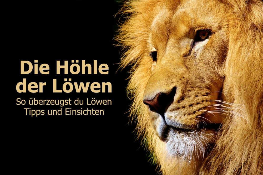 Die Höhle der Löwen, So überzeugst du Löwen, Tipps und Einsichten